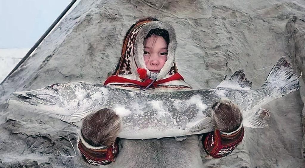 Коренные народы России получили план обменов с Арктическими странами